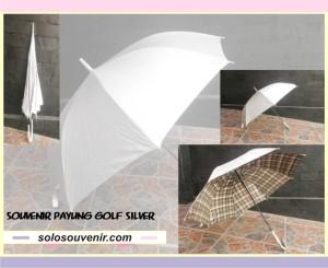 Souvenir Pernikahan payung silver kotak